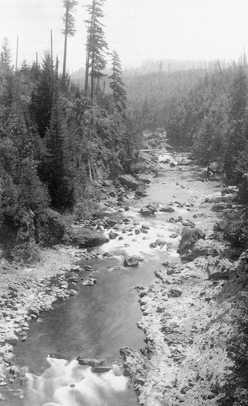 bullrunriver1894